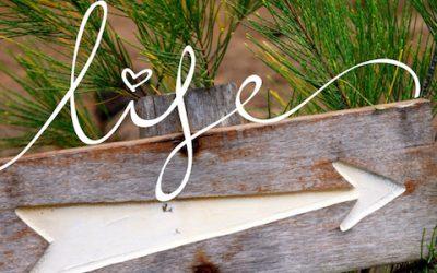 Embrasser son excellence – Découvrir son excellence dans l'action