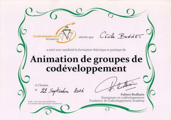 formation-co-developpement